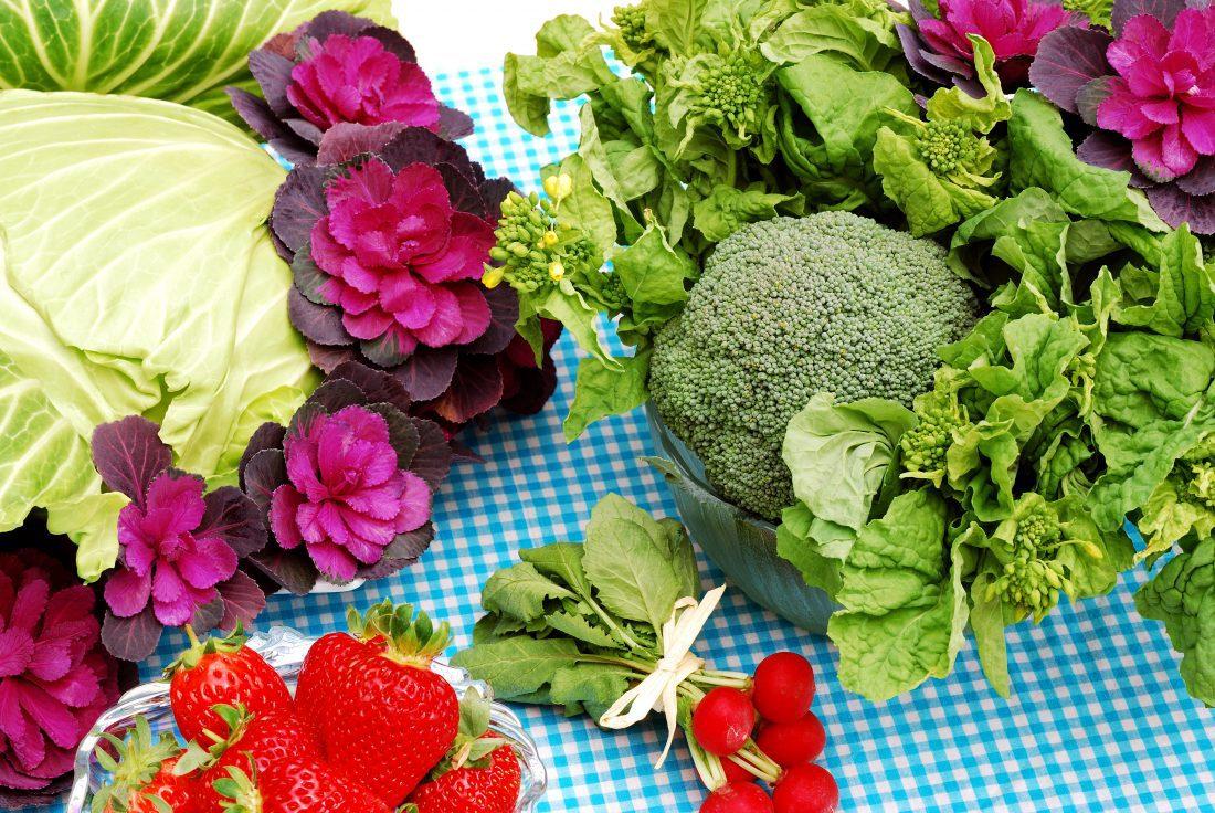Woo-hoo! Watauga Farmers Market to Reopen May 5th!